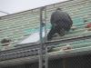 2012-11-12_aufbau_haus_tag_2_part_1_051