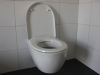 2013-03-08_toilette_montieren_021