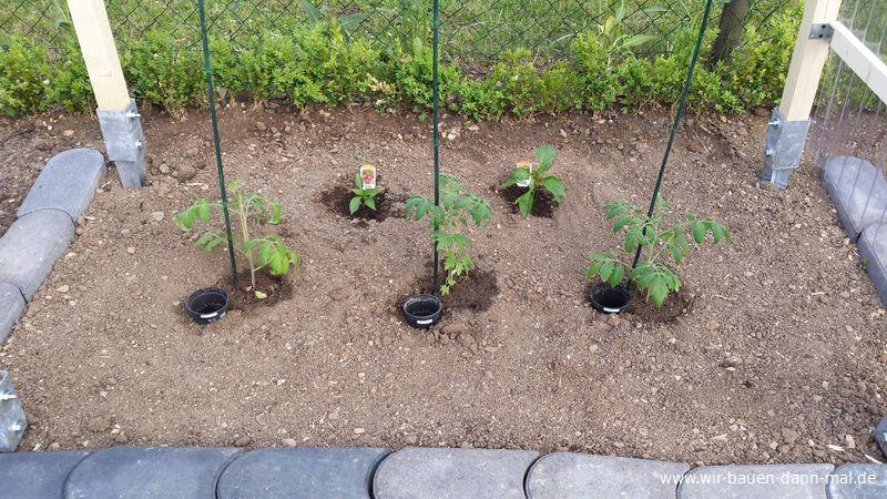 gem se im garten angepflanzt unser kleiner nutzgarten wir bauen dann mal ein haus. Black Bedroom Furniture Sets. Home Design Ideas