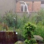 starkregen_ueberschwemmung_garten_2016-07-26_305