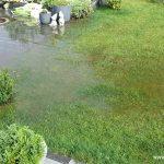 starkregen_ueberschwemmung_garten_2016-07-26_318